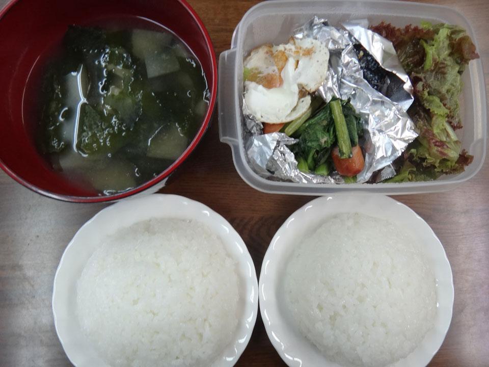 株式会社日食 今日のお昼ごはん ごはん 味噌汁 目玉焼き 青梗菜とウインナーの中華炒め 塩鮭 サニーレタス