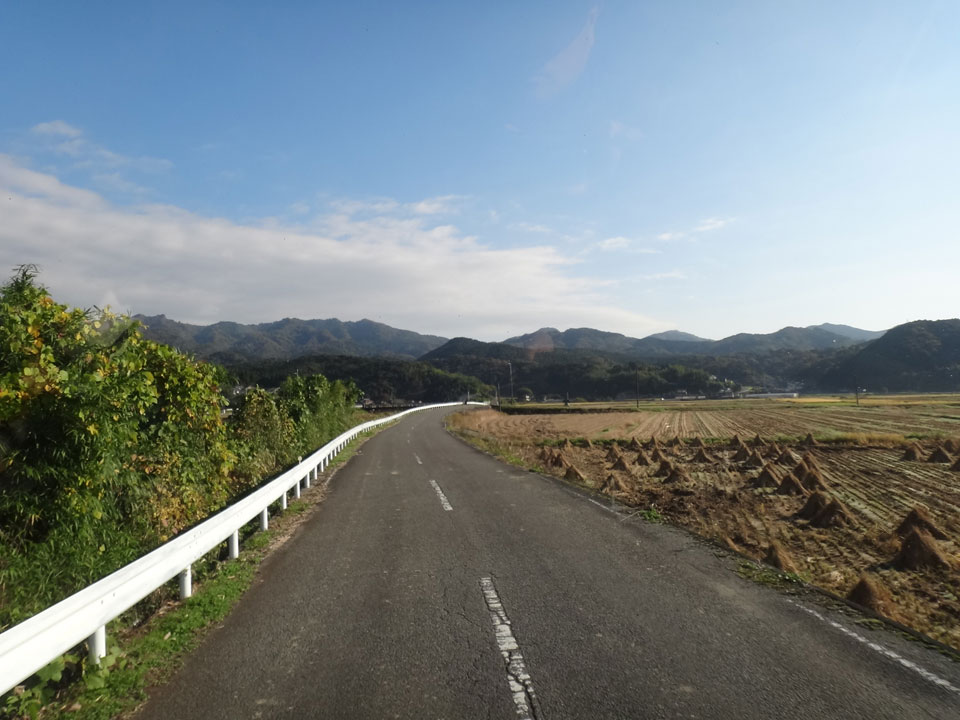 株式会社日食 大分県杵築市山香町 田んぼの風景