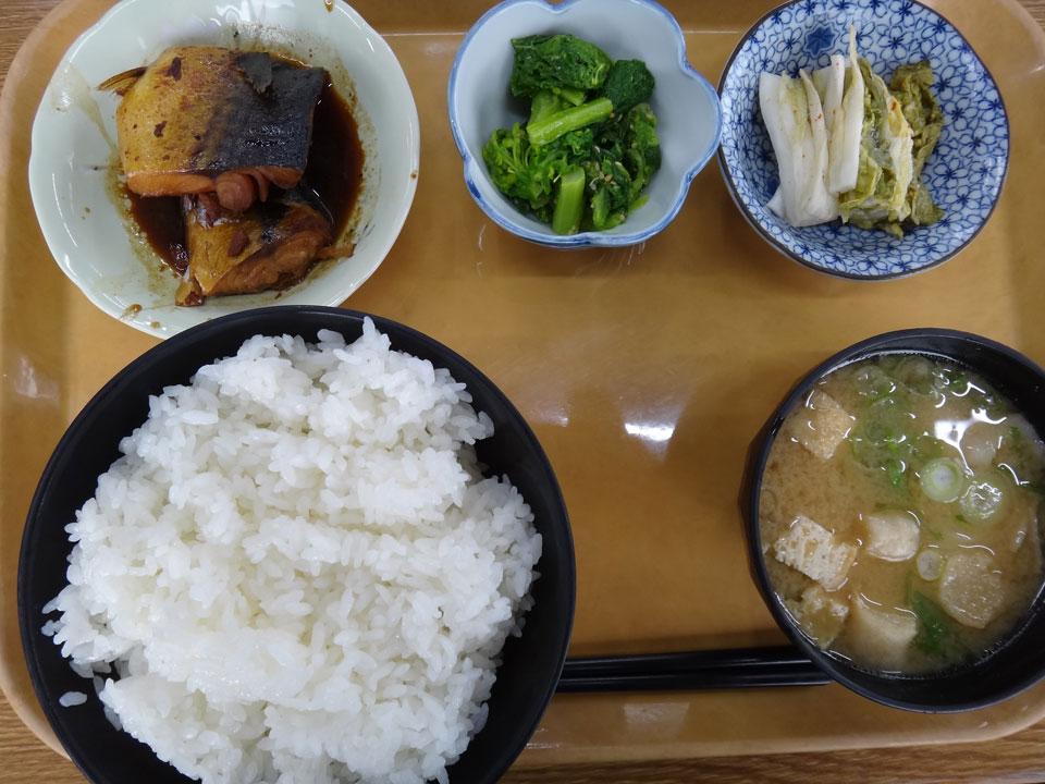 株式会社日食 今日のお昼ごはん ごはん亭はしもと 島根県松江市宍道町佐々布 国道9号線 ごはん 豚汁 鯖の煮付け 白菜の漬物 菜の花の辛子あえ