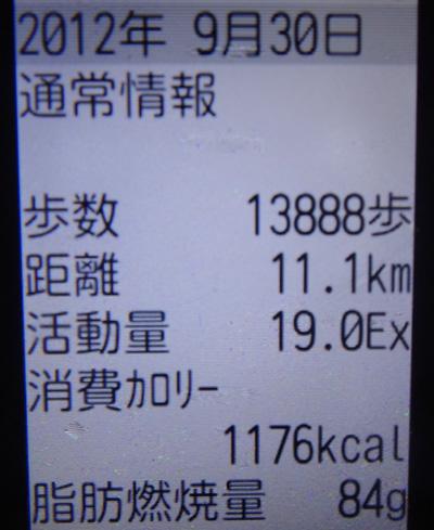 株式会社日食 携帯 歩数計
