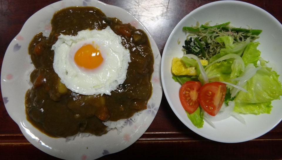 株式会社日食 朝ごはん カレー サラダ