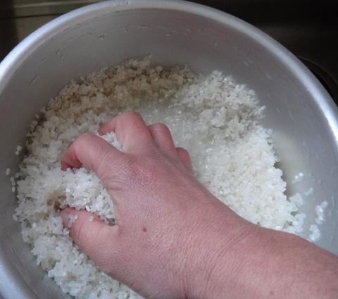 株式会社日食 洗米 試食