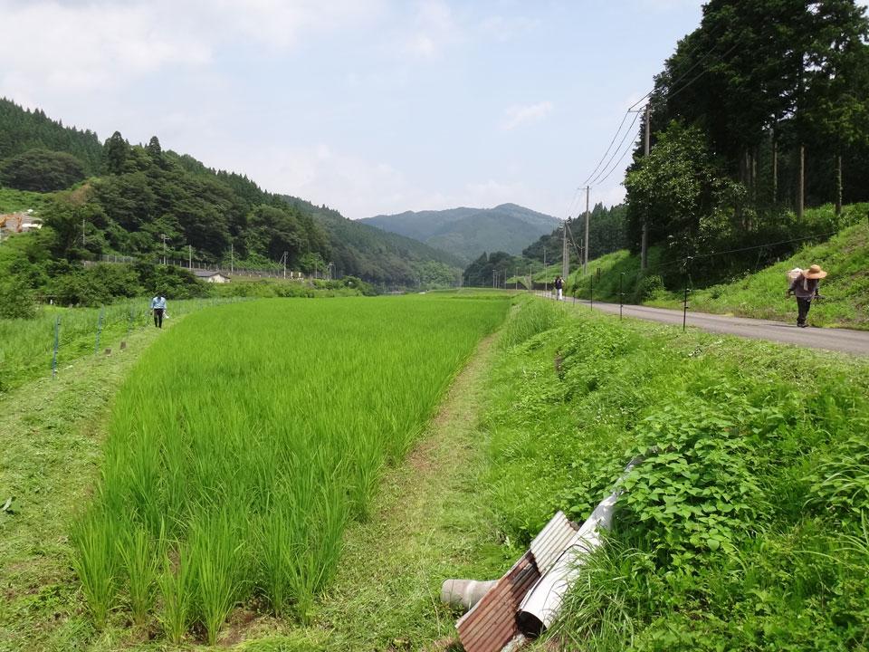JAたじま 村岡営農生活センターの営農相談員・吉田さん