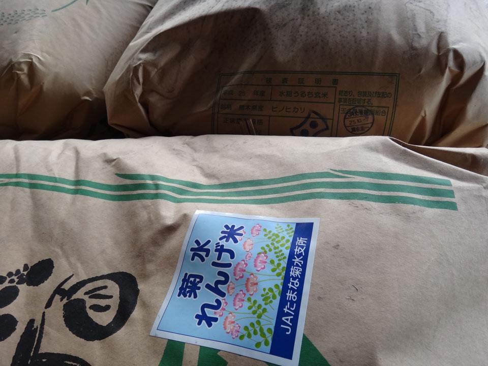 株式会社日食 熊本県八代市 玄米の積み込み 菊水れんげ米 25年産 ヒノヒカリ
