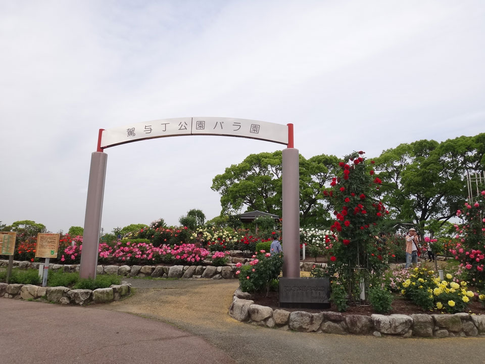 株式会社日食 駕与丁公園(かよいちょうこうえん) 福岡県粕屋郡 粕屋町 バラ園