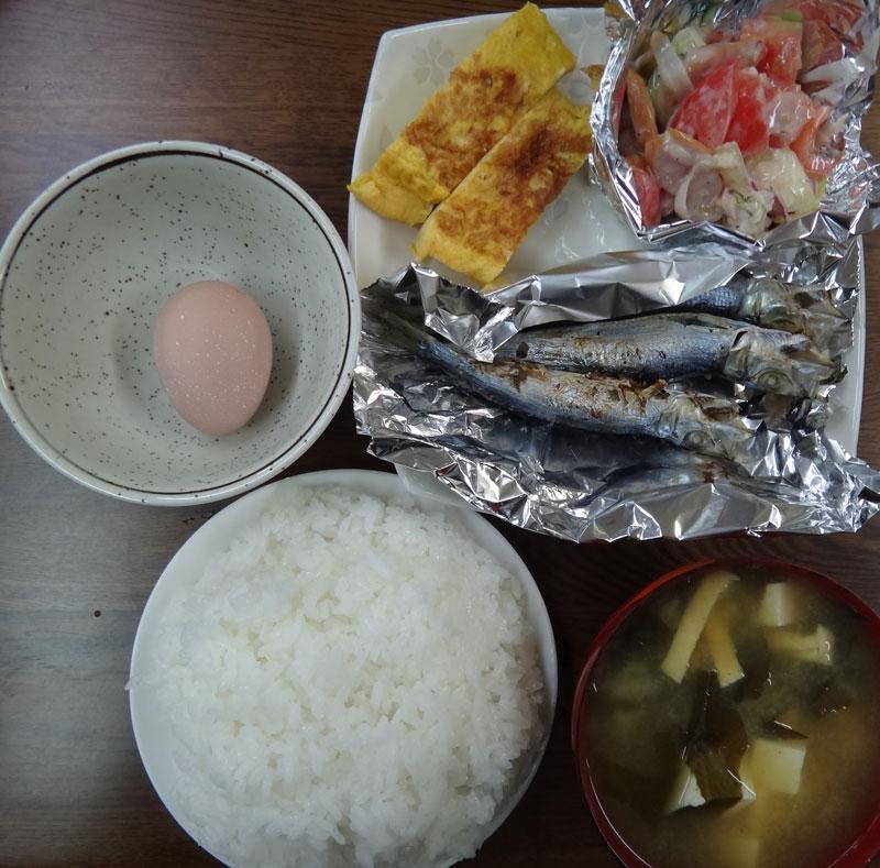 株式会社日食 今日のお昼ごはん ごはん 味噌汁 天草産いわしの丸干し 玉子焼き コールスローサラダ 生卵