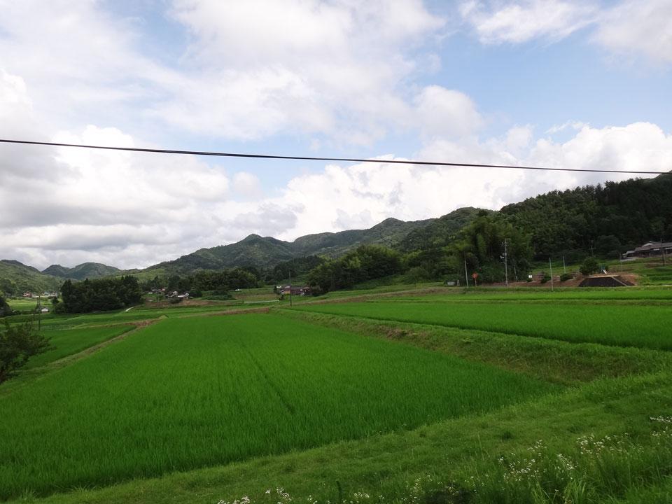 株式会社日食 島根県安来市広瀬町東比田 コシヒカリ