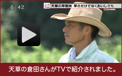 天草の倉田さんがTVで紹介されました。