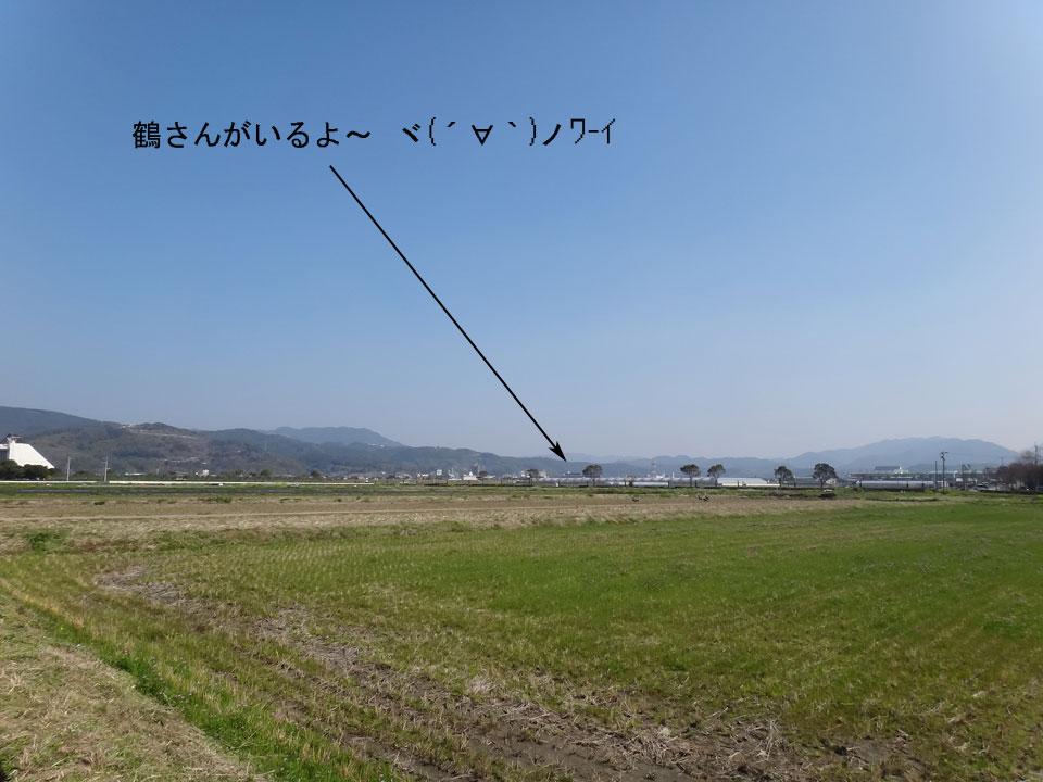 株式会社日食 鹿児島県出水市 鶴