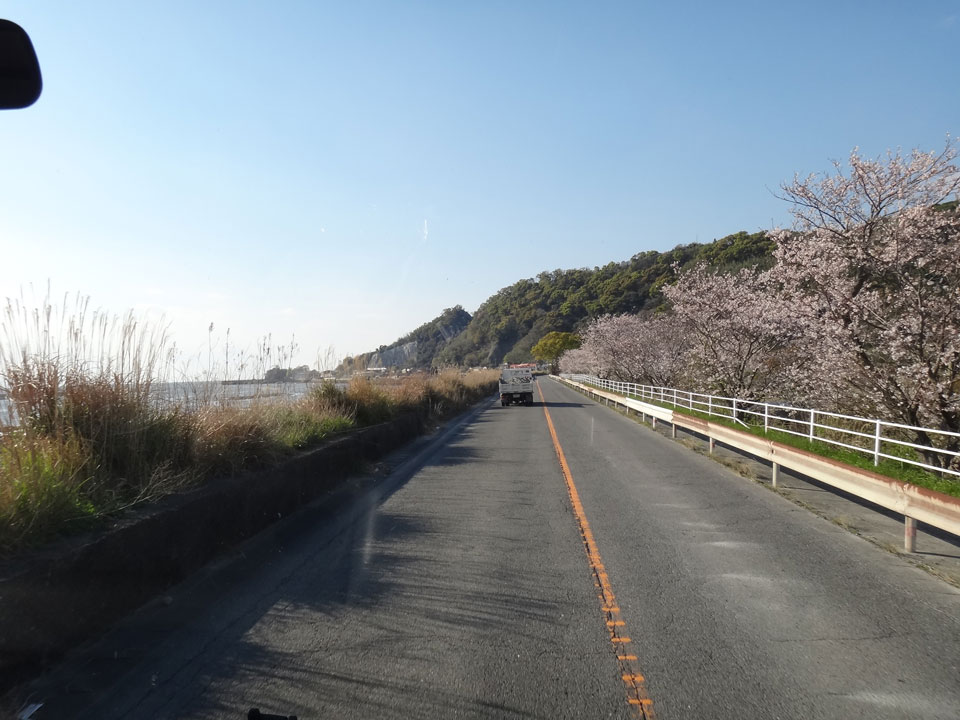 株式会社日食 国道501号線 熊本県熊本市西区松尾町 河内町 有明海 桜