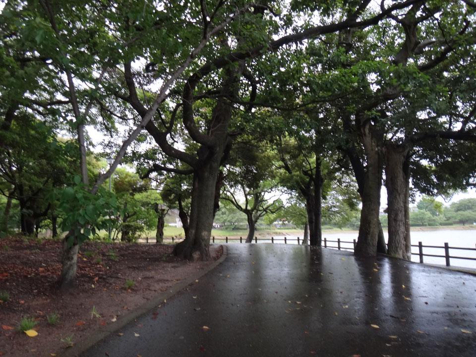 株式会社日食 駕与丁公園(かよいちょうこうえん) 福岡県粕屋郡 粕屋町