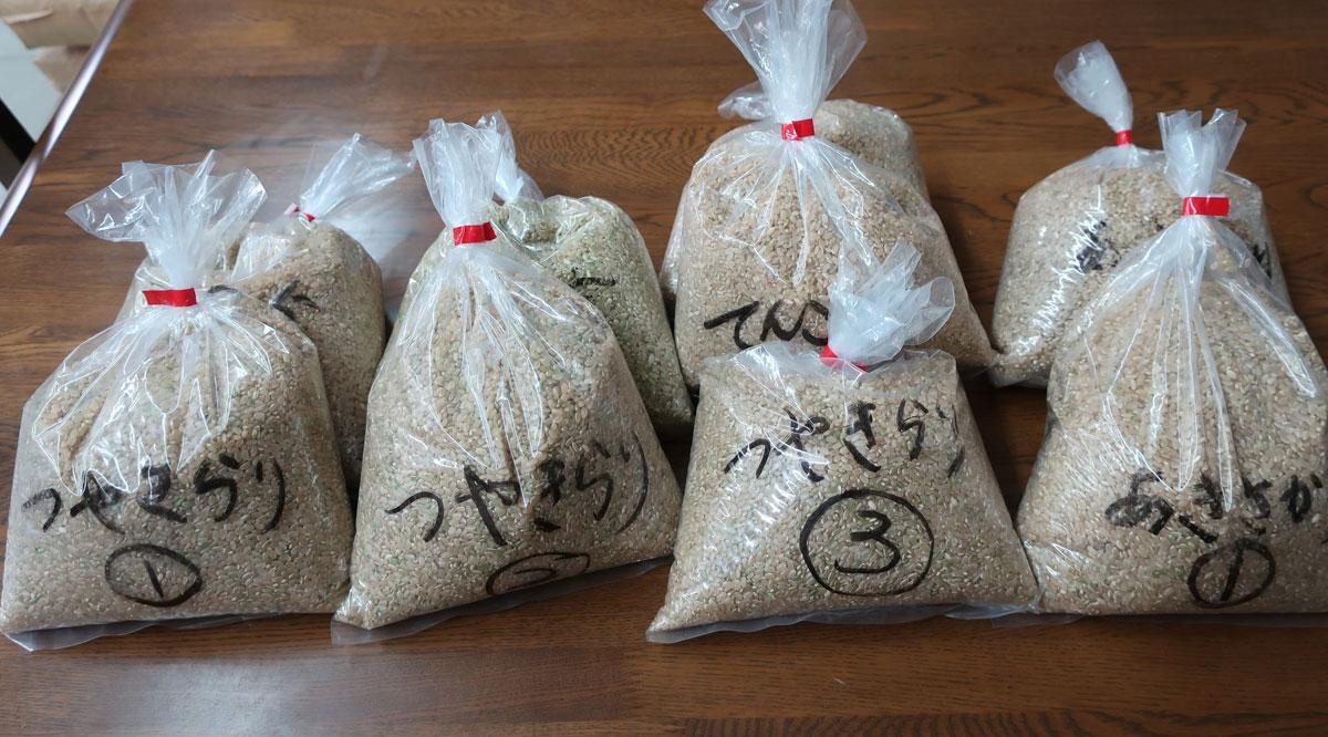 株式会社日食 静岡製機 食味分析計 TM3500 令和元年産 新米 サンプル玄米