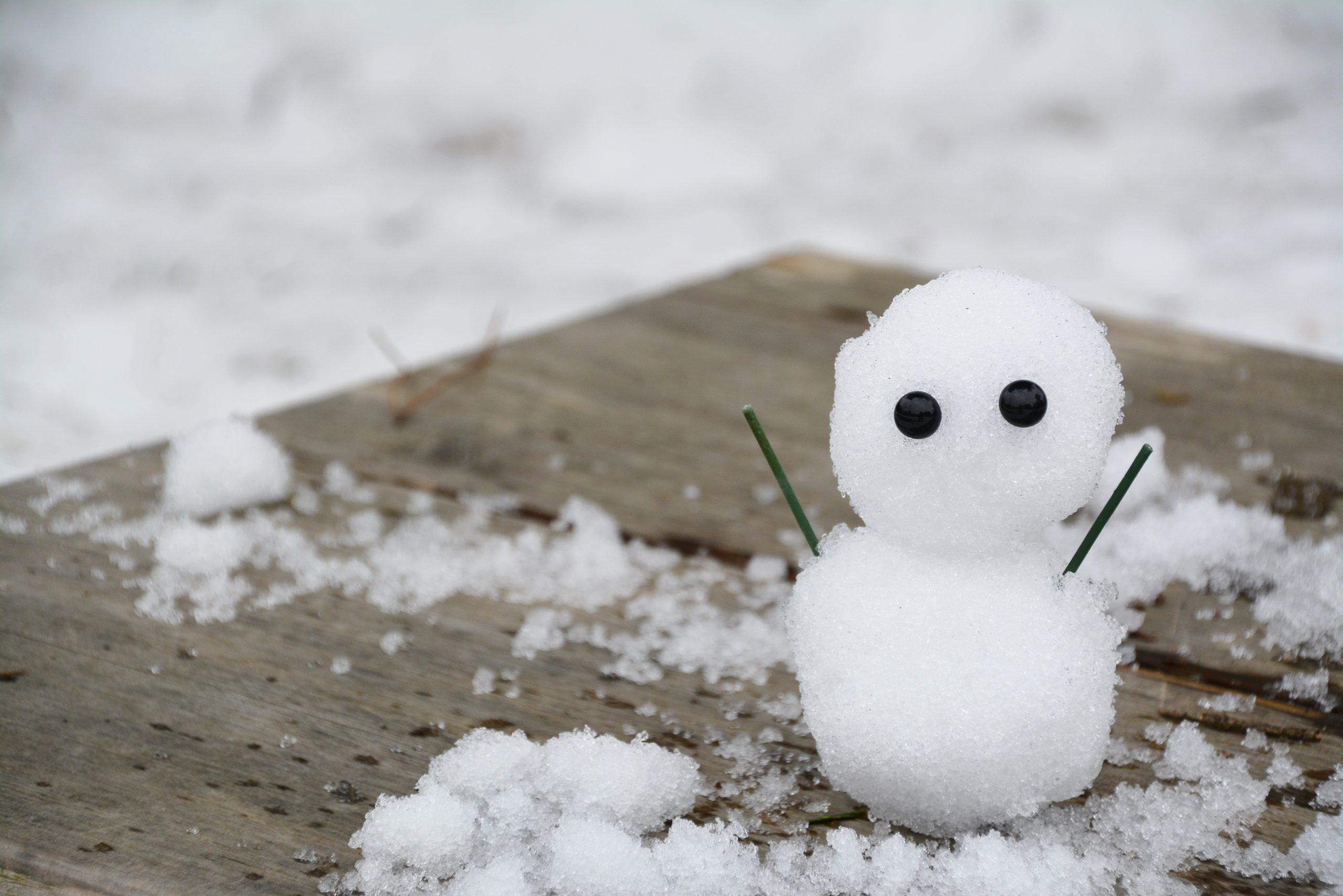 株式会社日食 雪だるま 初雪